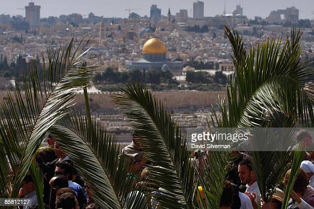 Catholic pilgrims take part in the traditional Palm Sunday procession from the Mt of Olives to the Old City seen in the background with its golden...