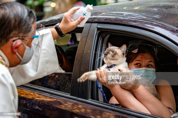 Catholic priest sprinkles holy water on a cat aboard a car via drive-in to prevent the spread of COVID-19, during a pet blessing at Eastwood Mall to...