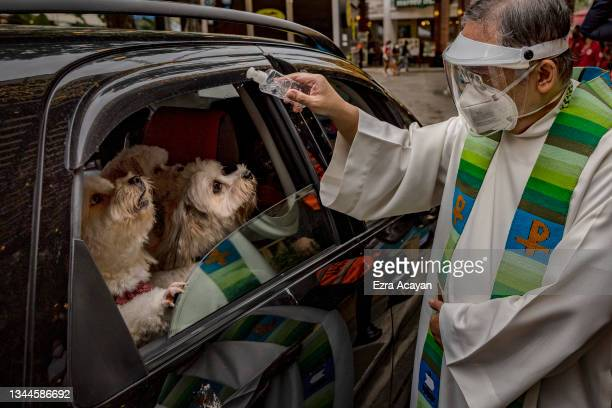 Catholic priest sprinkles holy water on dogs aboard a car via drive-in to prevent the spread of COVID-19, during a pet blessing at Eastwood Mall to...