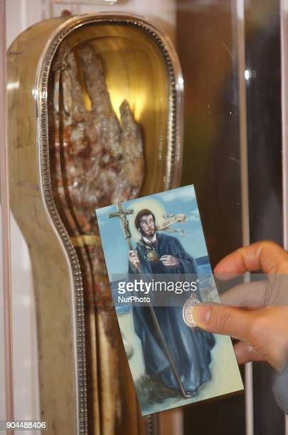 Catholics venerate the forearm of Saint Francis Xavier a popular saint revered by Catholics worldwide at St Michael's Cathedral Basilica in Toronto...