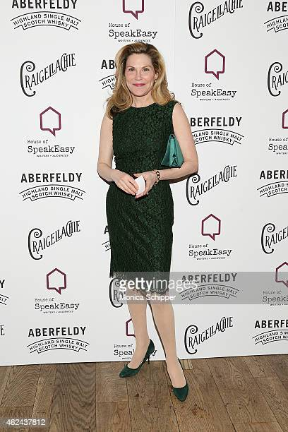 Cathy Graham board member of House of SpeakEasy attends the 2015 House Of SpeakEasy Gala at City Winery on January 28 2015 in New York City