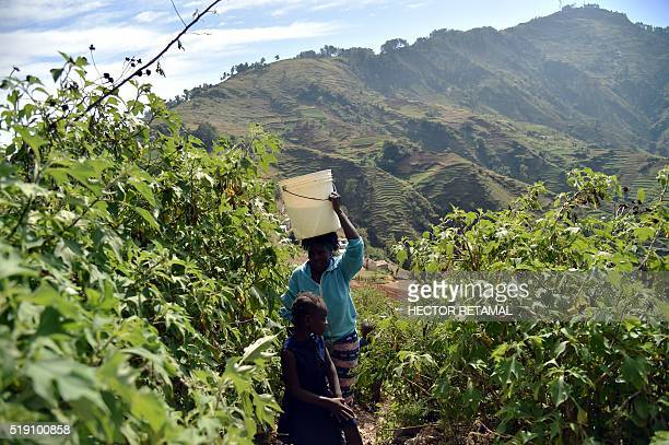 Cathy walks with a bucket of water on her head returning home from a source in Godet, in the commune of Kenskoff, in the Haitian capital,...