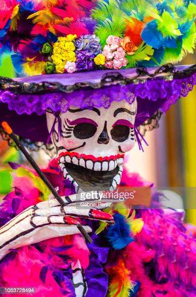 a catrina portrait - all souls day stock photos and pictures