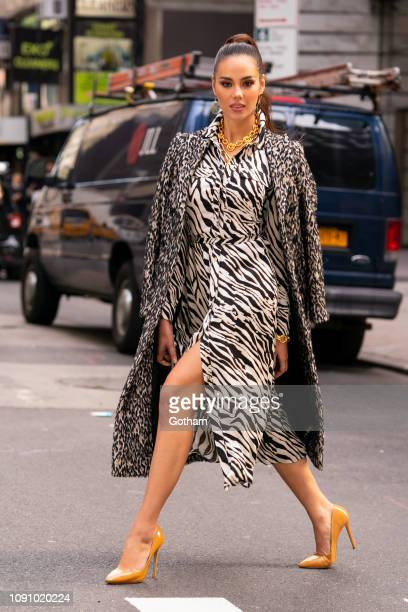Catriona Gray is seen in Midtown on January 07 2019 in New York City