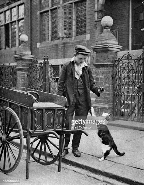'Cat's meat man' London 19261927 Illustration from Wonderful London edited by Arthur St John Adcock Volume I published by Amalgamated Press