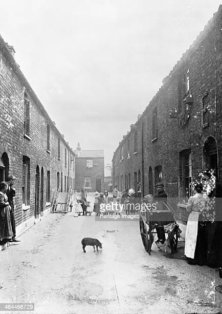 Cat's meat man on a slum street London 1900s The man can be seen on the right with a cat between the wheels of his barrow A line of children halfway...