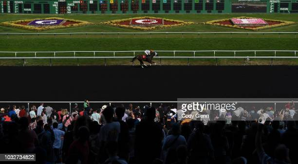 Cattering with Ricardo Gonzalez up compete in the 4th Race during Summer Races at Golden Gate Fields on Sunday September 2 2018 in Berkeley California