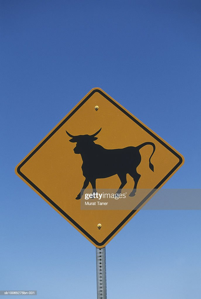 Cattle crossing sign, close-up : Foto stock
