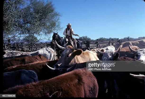 WON 'Cattle Drive' Airdate May 7 1978 BRUCE
