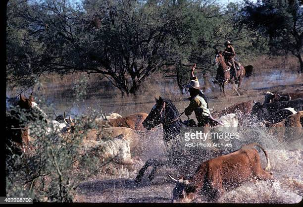WON 'Cattle Drive' Airdate May 7 1978 ROUNDING