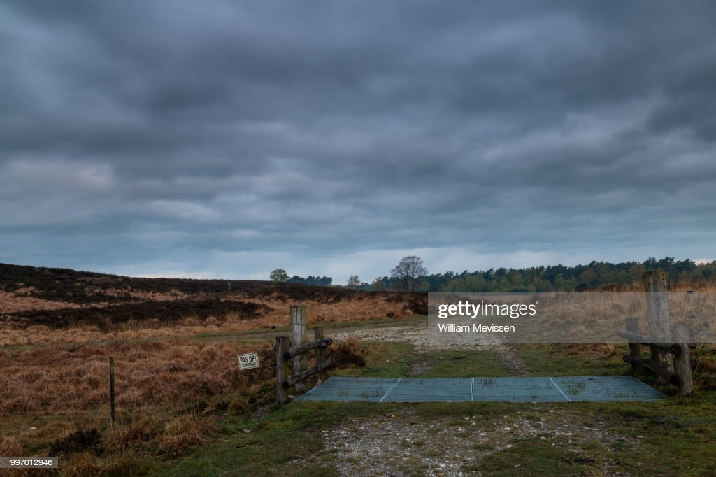 Cattle Grid : Stockfoto