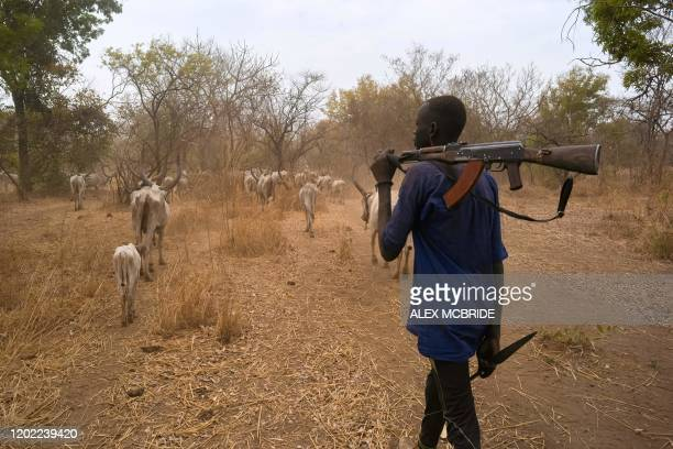 Cattle keepers walk with their cows during a seasonal migration of their cattle for grazing near Tonj, South Sudan on February 16, 2020. - Violence...