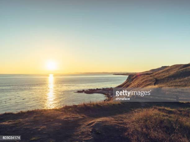 Cattle Point Shoreline at sunset