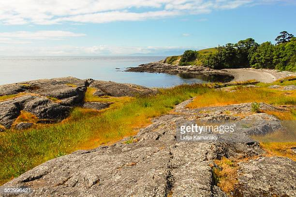 cattle point shoreline - rocky coastline stock pictures, royalty-free photos & images