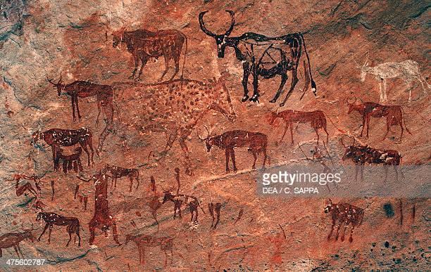 Cattle rock painting Tadrart Acacus Massif Libya
