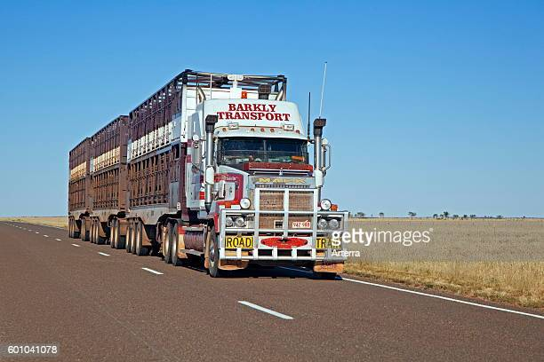 Cattle transport by triple road train fitted with roo bar on the Barkly Highway Northern Territory Australia