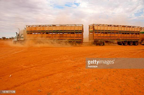Cattle truck leaving the station Destocking will be an important first step in the conservation management of this diverse desert ecosystem on the...