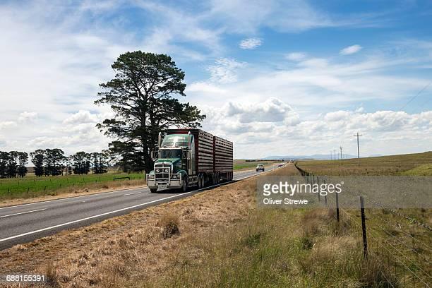Cattle Truck