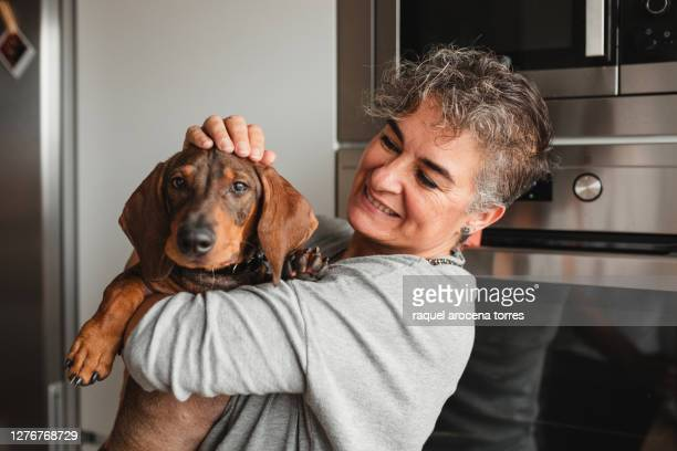 caucasian adult woman with her dog at home hugging - 1 minute 50 ストックフォトと画像
