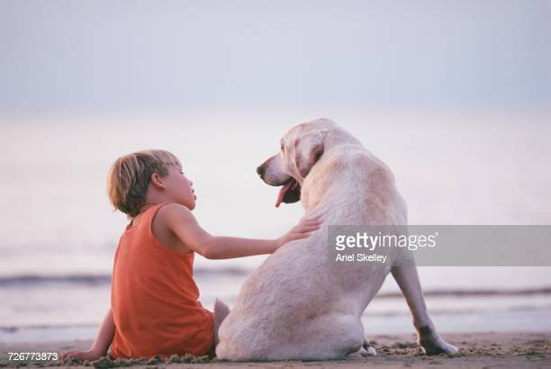 caucasian boy and dog sitting on beach - affectionate stock photos and pictures