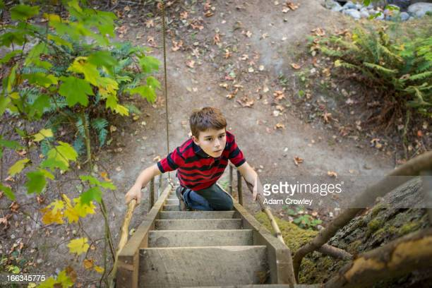 Caucasian boy climbing ladder to tree house