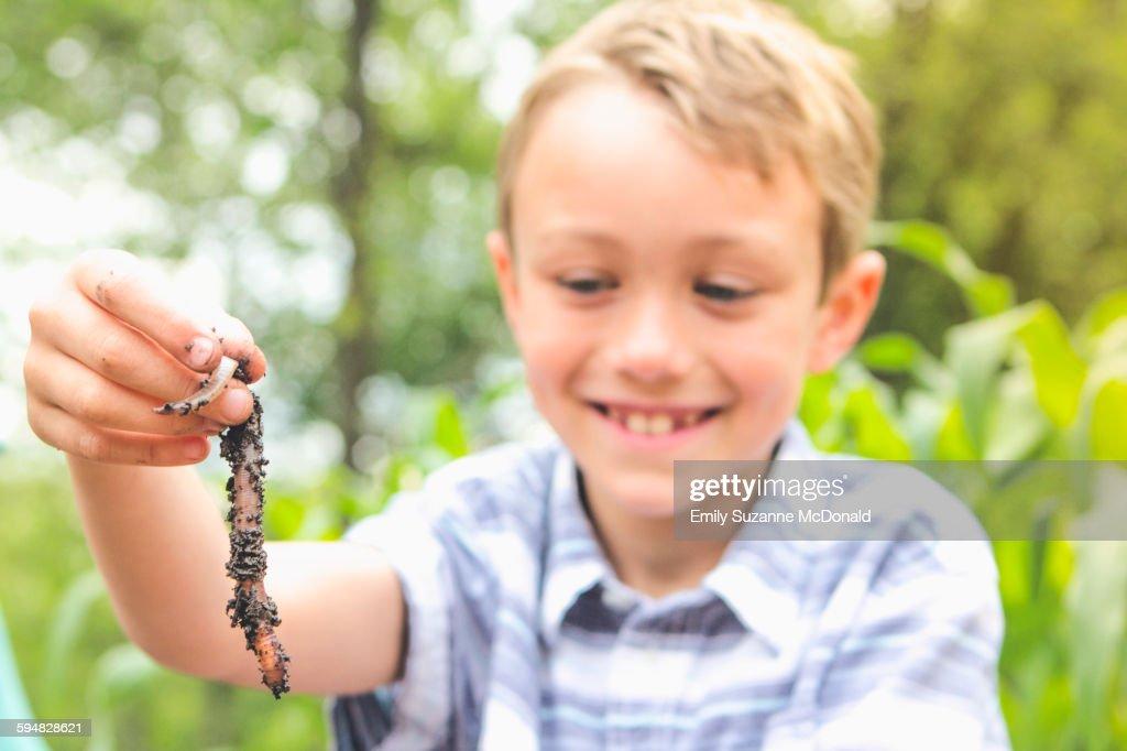 Caucasian boy examining worm : Stock Photo