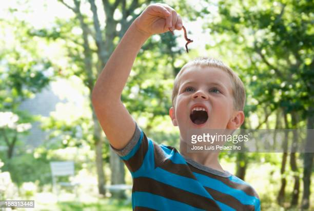 caucasian boy looking at worm - worm stock photos and pictures