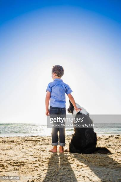 Caucasian boy petting dog on beach