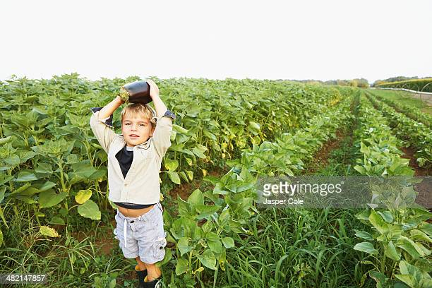 Caucasian boy picking vegetables in field