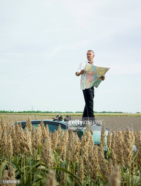 Caucasian businessman on top of car in field looking at map