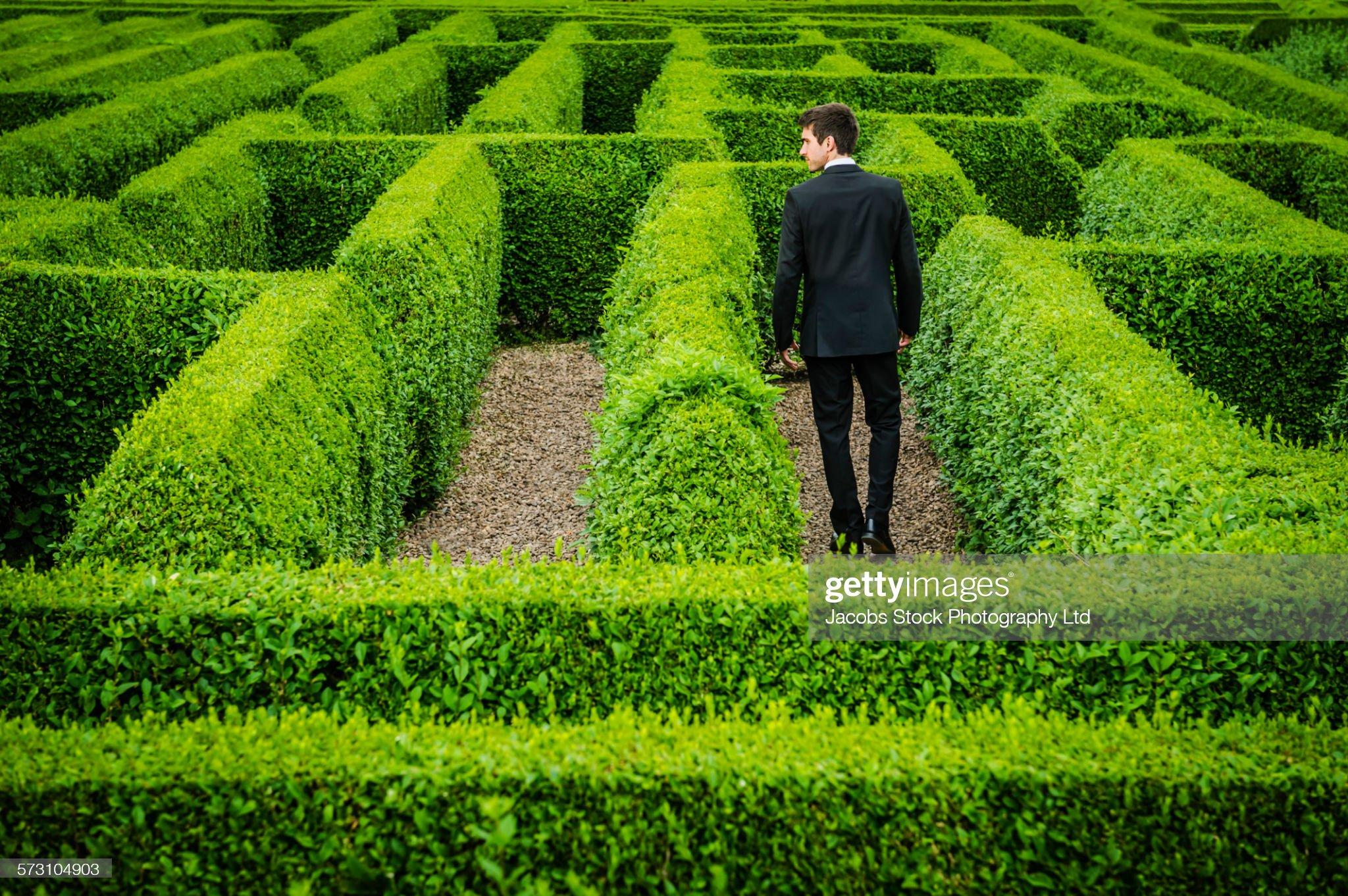 Caucasian businessman walking in hedge maze : Photo
