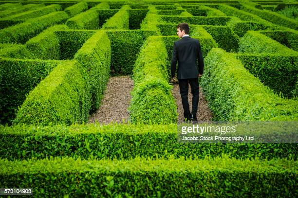 caucasian businessman walking in hedge maze - maze stock photos and pictures