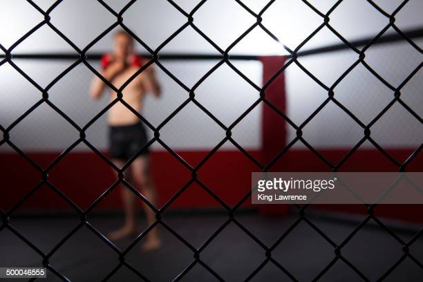 caucasian cage fighter standing in cage - mixed martial arts stock pictures, royalty-free photos & images
