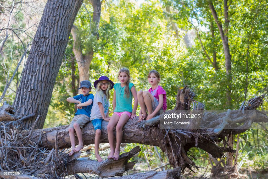 Caucasian children sitting on tree root in forest : Stock Photo
