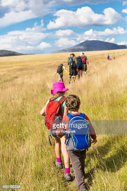 Caucasian children walking in grassy field in remote landscape