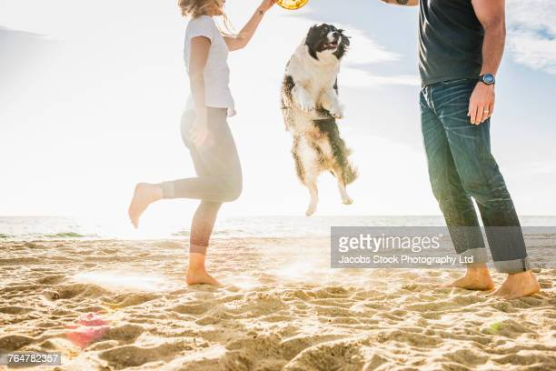 Caucasian couple playing with dog at the beach