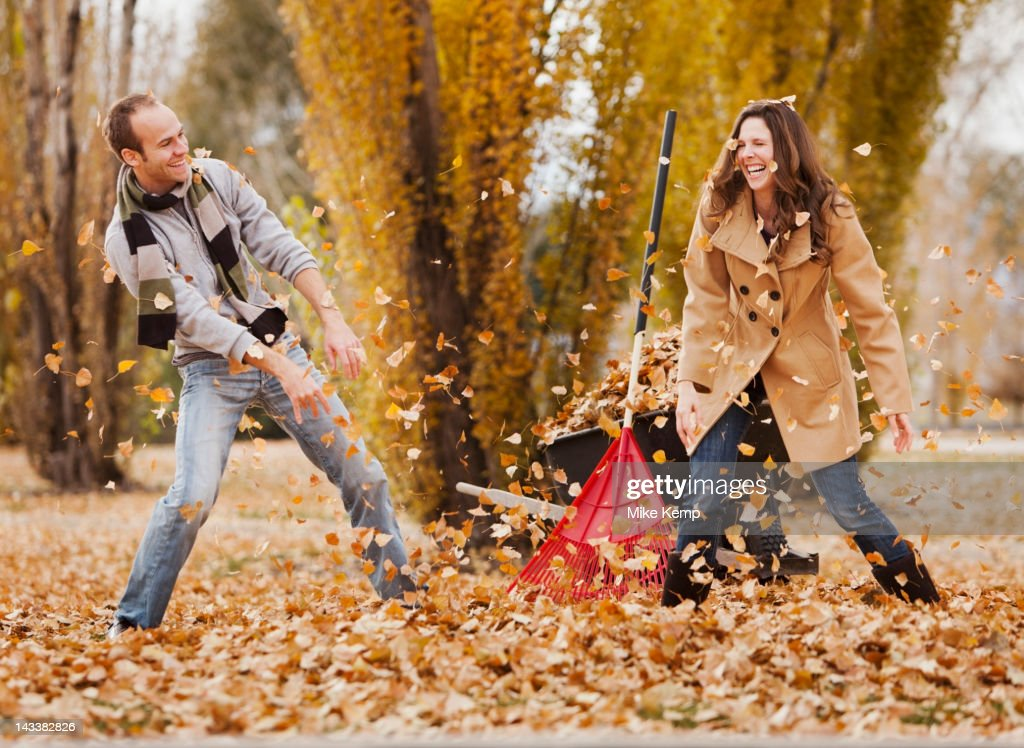 Caucasian couple raking autumn leaves : Stock Photo