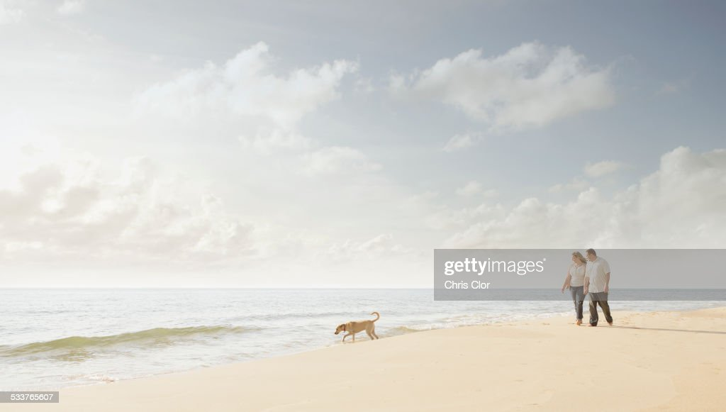 Caucasian couple walking dog on beach : Foto stock