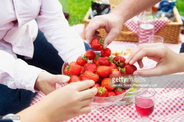 caucasian family eating strawberries at picnic - picnic stock pictures, royalty-free photos & images