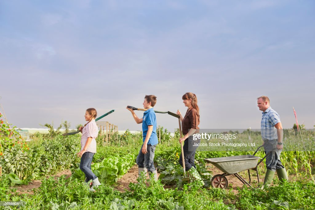 Caucasian farmer family working together in farm fields : Stock Photo