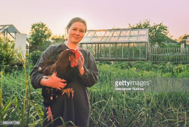 caucasian farmer holding chicken in garden - funny rooster stock photos and pictures