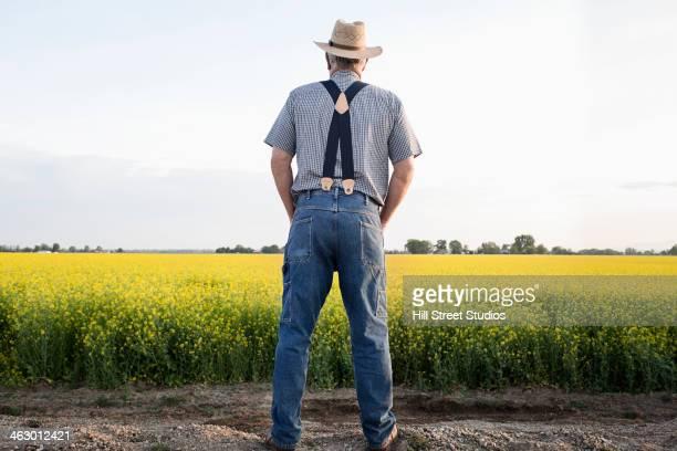 Caucasian farmer looking at mustard crop