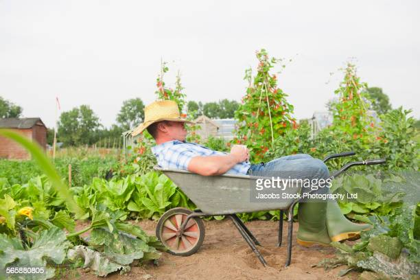 Caucasian farmer napping in wheelbarrow in farm field