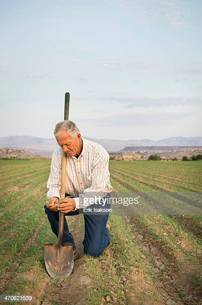 caucasian farmer planting seeds in crop field - kneeling stock pictures, royalty-free photos & images