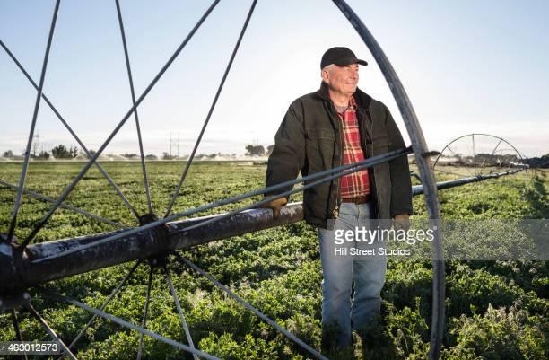 Caucasian farmer standing in alfalfa field
