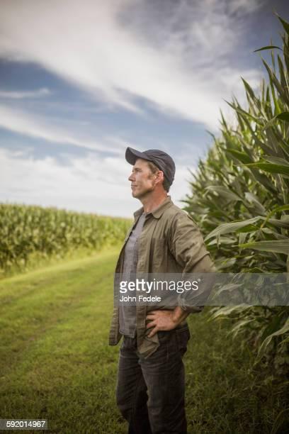 Caucasian farmer standing in corn crops