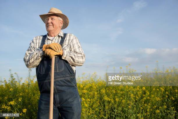 caucasian farmer standing in mustard field - bib overalls stock pictures, royalty-free photos & images