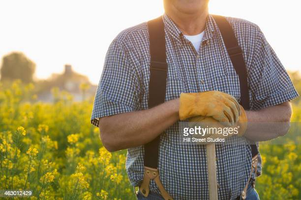 caucasian farmer standing in mustard field - mid section stock photos and pictures