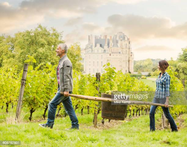 caucasian farmers carrying grapes in vineyard - loire valley stock pictures, royalty-free photos & images