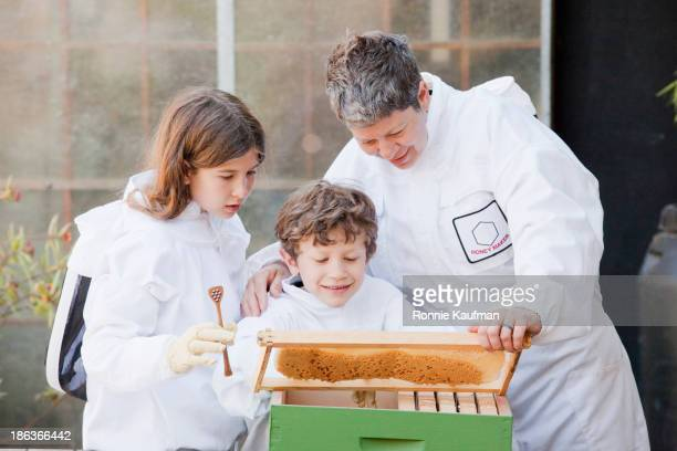 Caucasian father and children examining bee colony together